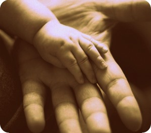 child adult hands 299x263