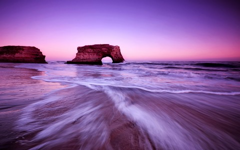 purple_sea_rocks-fb