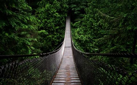 bridge-fb