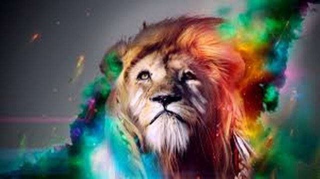 lion_640_358